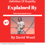 The Definition Of Stupidity Explained By David Wood